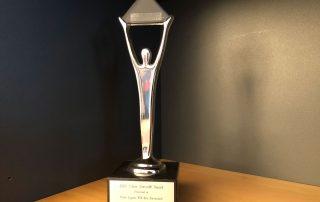 2013 SILVER STEVIE AWARD